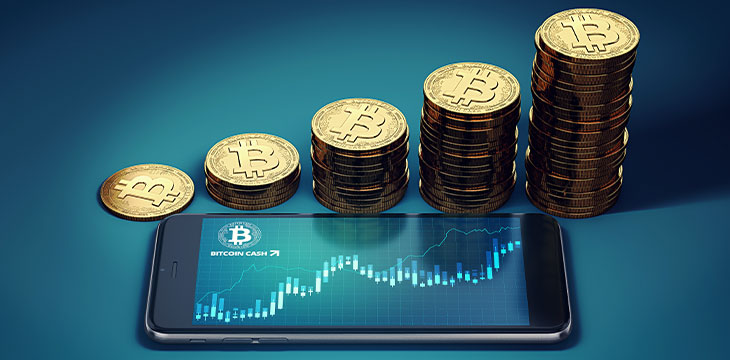Bitcoin Cash looks to be on the rebound