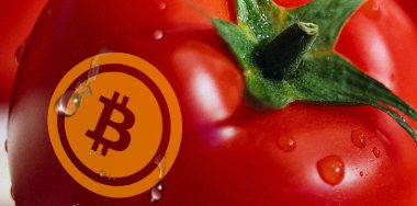 'Cryptomatoes' wants to recycle crypto mining heat to grow crops