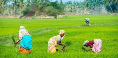 India's Kerala looks to blockchain for supply chain management