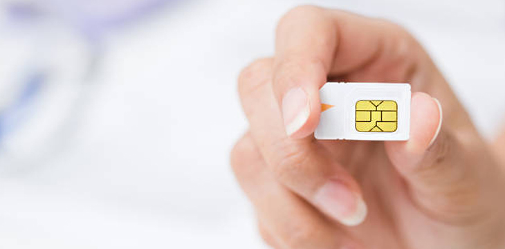 Alleged crypto-targeting SIM swap scammer nabbed in California