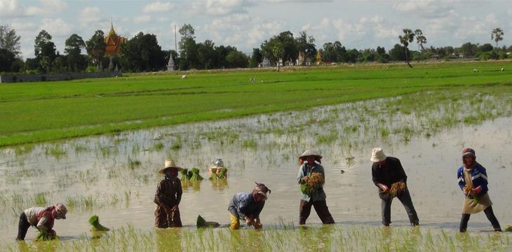 Oxfam utilizes blockchain to help Cambodian farmers