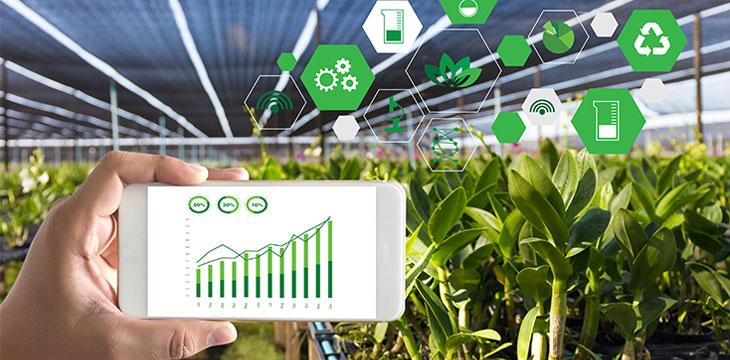 Four agribusinesses turn to blockchain