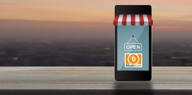 My light-bulb moment: Bitcoin Cash works!