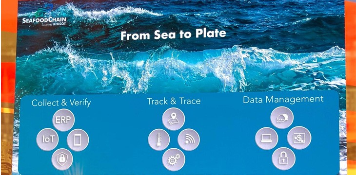 from-sea-to-plate