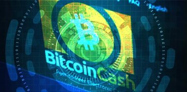 Troubled BCH thinks small as world looks for leadership