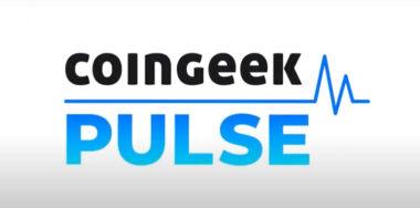 The CoinGeek Pulse: Episode 1