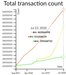 2020-report-the-original-bitcoin-speaks-volumes-1