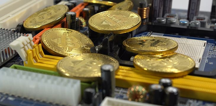bitcoin social network
