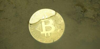 Wladimir van der Laan steps back from BTC Core role, asks for more decentralization