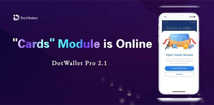 DotWallet Pro: Huge Update! What's New?