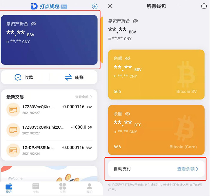 DotWallet Asset Details in Chinese