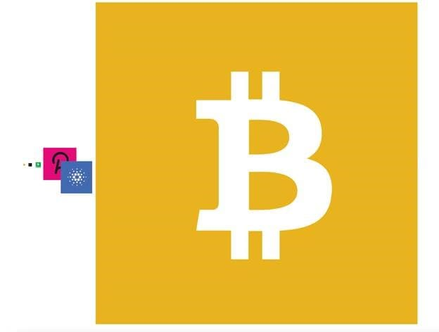 To scale representation of BTC, ETH, BCH, DOT and ADA compared to BSV's known bandwidth