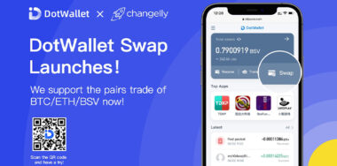 Another Huge Update! DotWallet Adds Multi-currency Swap Feature!