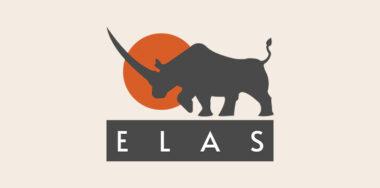 Token protocols on BSV: Elas Digital