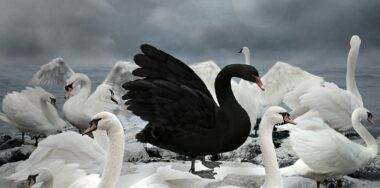 BSV impact could be Bitcoin's 'Black Swan' event, if it avoids BTC's mistakes