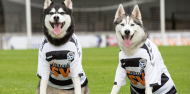 Ayr United Kit Launch: 10 Year Sponsorship Anniversary is celebrated with Kenny Dog-Leash & Paul Dogba