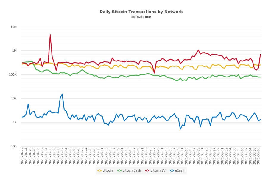 BSV transactions have already overtaken all other networks, with each transaction creating fees for miners